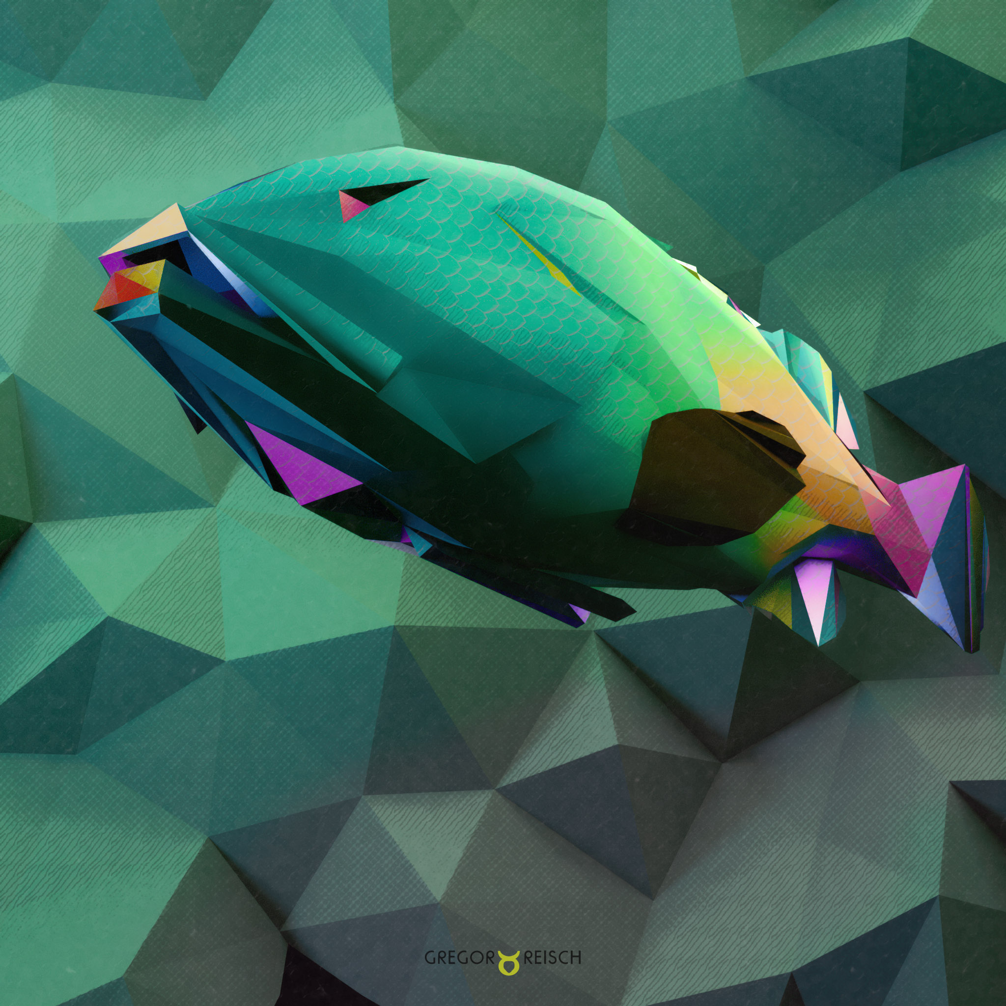 Artwork Polygon Fish by Gregor Reisch